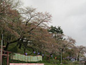 愛宕山20210430