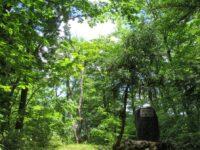 深緑の山刀伐峠
