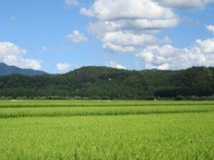 最上町田園風景
